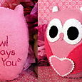 Pink Valentine Owl