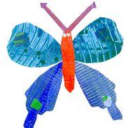 DeepSpaceericcarlebutterfly