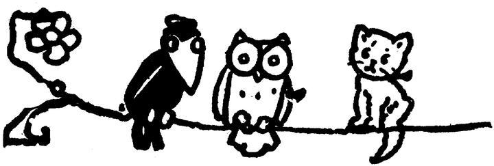 Crow owl kitten on a wire