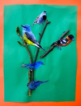 NoTimebirds