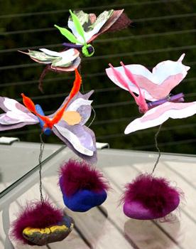 MountainPulsebutterflies