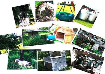 GardeningWithoutSkillsphoto