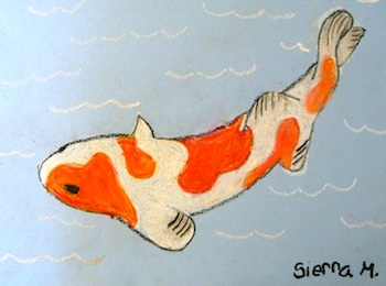 Drawing Koi Fish Things To Make And Do Crafts And Activities For Kids The Crafty Crow