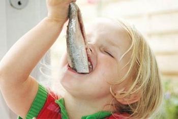 Mus herring