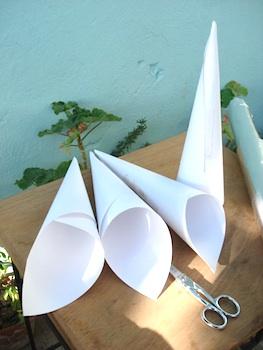4 roll paper cones