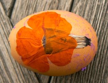 TheMagicOnionspressedfloweregg