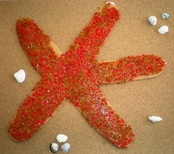 Preschool Playbook starfish
