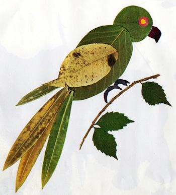 Atelier Pour Enfants leaf pictures bird