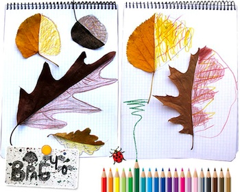 Krokotak leaf drawings