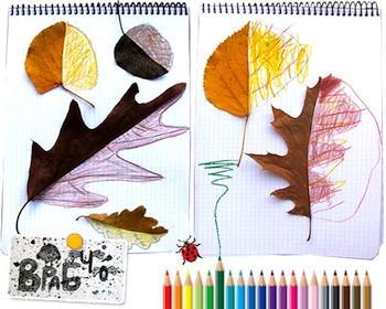 Krokotak leaf drawings