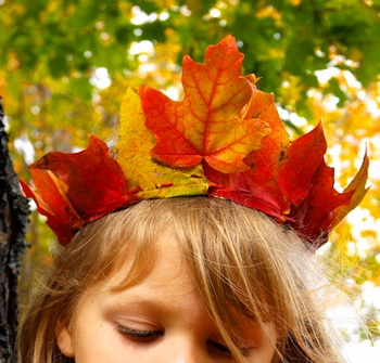 Twig And Toadstool fall leaf crown