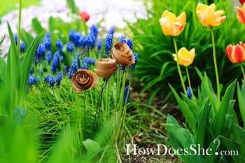 HowDoesSheseededpaperflowers