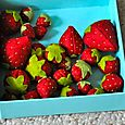 felt strawberry tutorial
