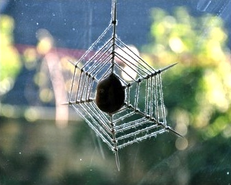 Emma Bradshaw conker cobwebs