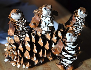 Hillbilly Jillies pinecone creatures penguin