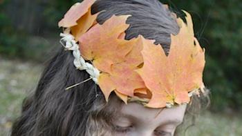 Chasing Fireflies fall leaf crowns