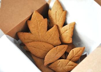 Imagine Childhood ginger leaves cookies
