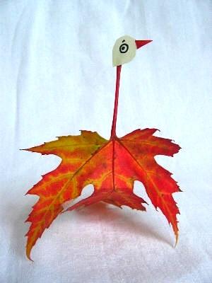Qlturka leaf birds
