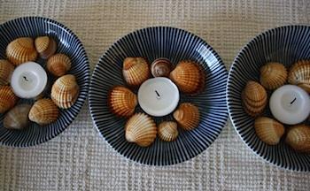 The Magnifying Glass shell menorah