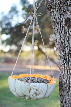 Dreamy Whites pumpkin bird feeder