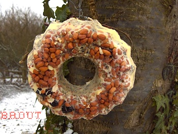 Badut wild bird food wreath