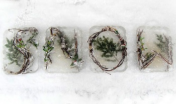 Craftberry Bush frozen letters in snow