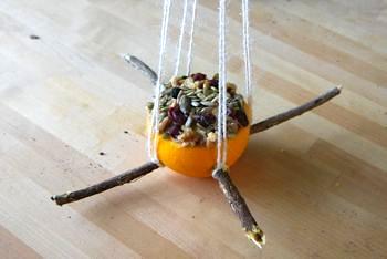Amber Dusick bird feeder