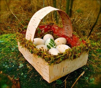 Twig And Toadstool birch bark basket