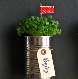 One Charming Party magnetic tin can planter