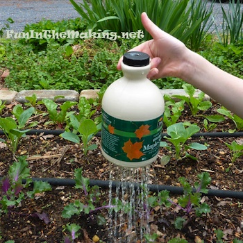 Fun In The Making thumb controlled watering pot