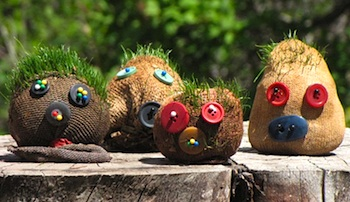 Ordinary Life Magic grass heads