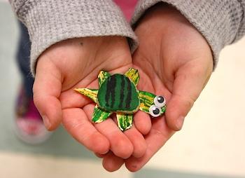 Preschool Daze rock turtle