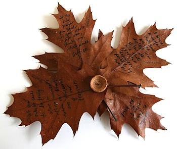 Making Books Blog oak leaf book