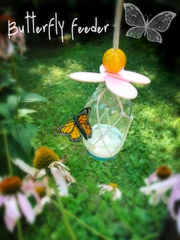 Mother Rising butterfly feeder