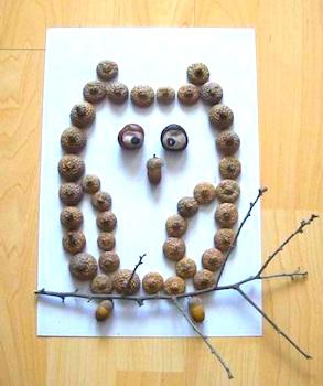 Csupamoka2 acorn owl