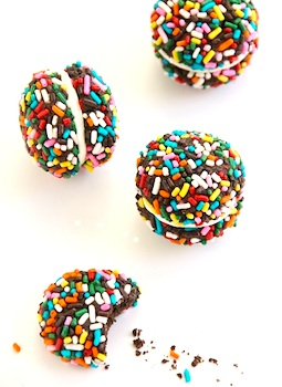 The Decorated Cookie sprinkles cookies