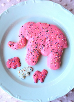 Munchkin Munchies jumbo animal cookies