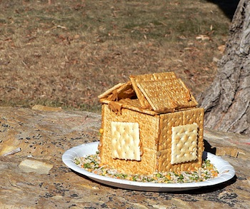 Bless This Mess house shaped bird feeder