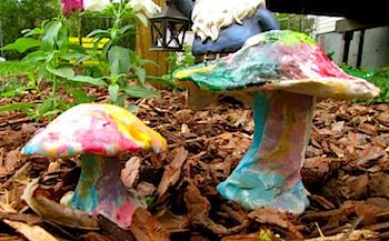 Barks Blog clay garden mushrooms