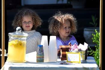 Curly Birds 25 tips for hosting a lemonade stand