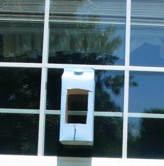 We Made That homemade window bird feeder