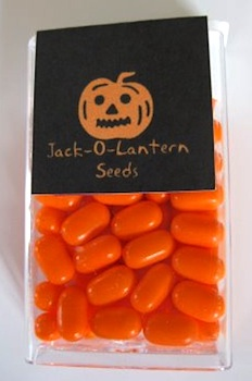 Can't Stop Making Things jack o'lantern seeds