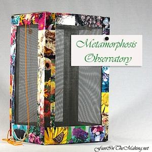 cardboard box craft butterfly box
