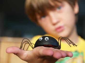 The Magic Onions make a friendly spider