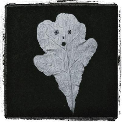 oak leaf ghosts