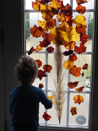 fall tree sun catcher made from leaves and sticky contact paper
