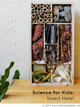 insect hotel science project for kids