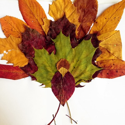 Fall Leaf Turkey Craft on Abc Countdown Calendars