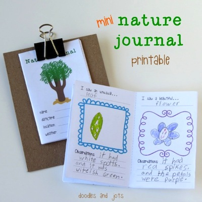 Artchoo! junior naturalist nature journal free printable