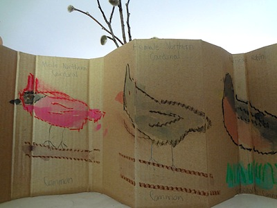 Alina's Adventures DIY cardboard backyard bird guide